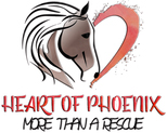 Heart of Phoenix Rescue